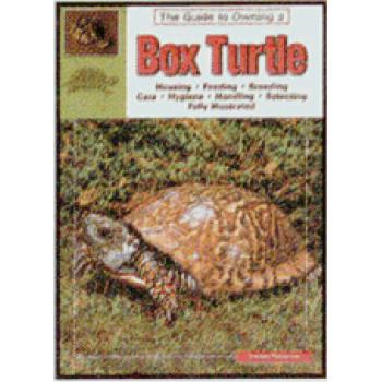 TURTLES-BOX