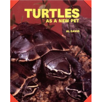 TURTLES AS A NEW PET
