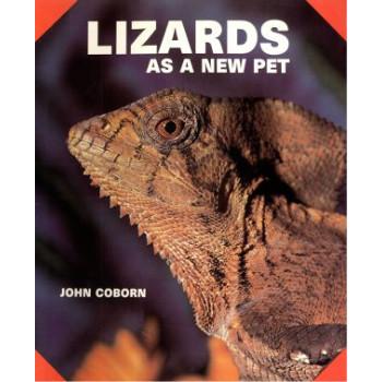 LIZARDS AS A NEW PET