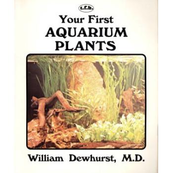 YOUR FIRST AQUARIUM PLANT