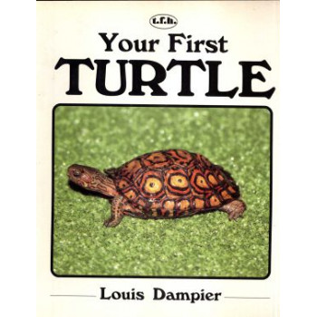 YOUR FIRST TURTLE
