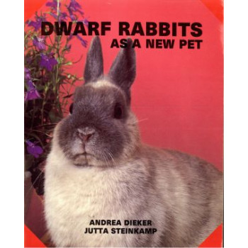 DWARF RABBITS AS A NEW PET