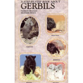 GERBILS - STEP BY STEP