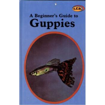 GUPPIES - A BEGINNER'S GUIDE