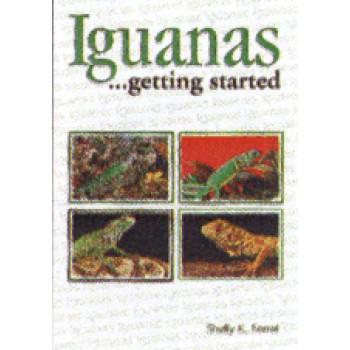 IGUANAS AS A HOBBY