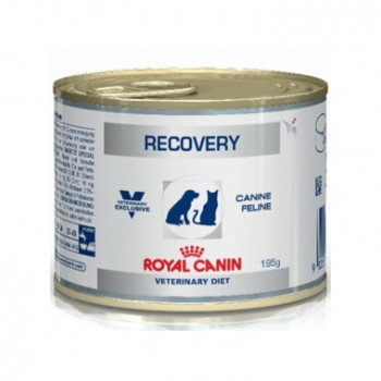 RECOVERY CAT/DOG 195gr ROYAL CANIN