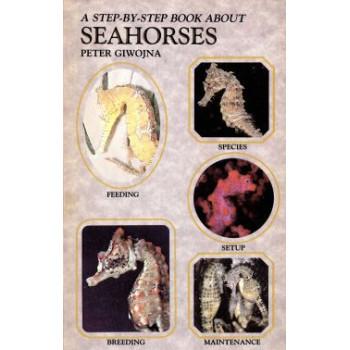 SEAHORSES - STEP BY STEP