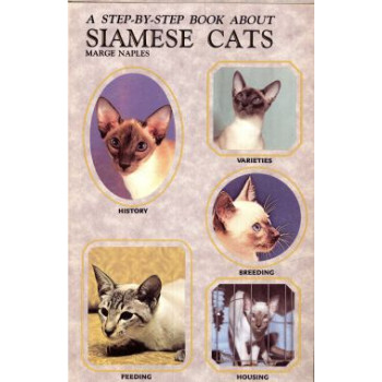 SIAMESE CATS - STEP BY STEP