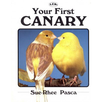 YOUR FIRST CANARY