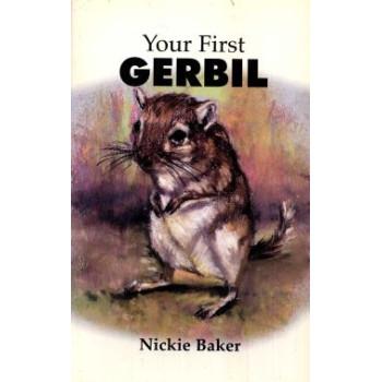 YOUR FIRST GERBIL