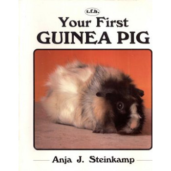 YOUR FIRST GUINEA PIG