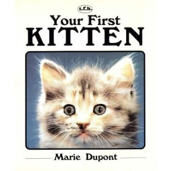 YOUR FIRST KITTEN