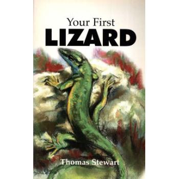 YOUR FIRST LIZARD