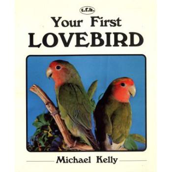 YOUR FIRST LOVE BIRD
