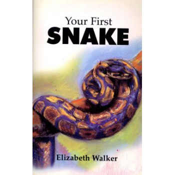 YOUR FIRST SNAKE